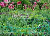 Сетка для вьющихся растений